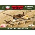 P-40 Warhawk Single Plane Box